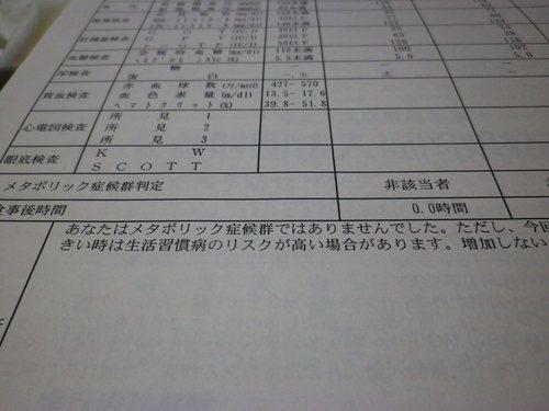 IMGP1576r.JPG