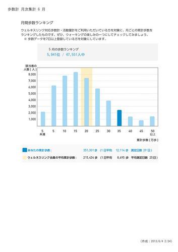 WellnessLINK_Monthly_Report_201305_06.jpg