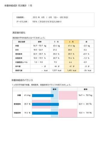 WellnessLINK_Monthly_Report_201306_01.jpg