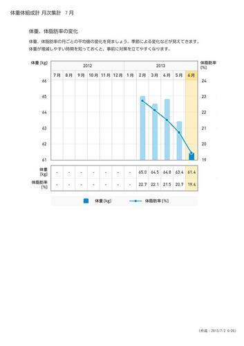 WellnessLINK_Monthly_Report_201306_03.jpg