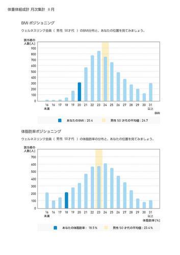 WellnessLINK_Monthly_Report_201307_02.jpg
