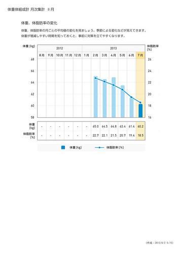 WellnessLINK_Monthly_Report_201307_03.jpg