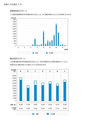 WellnessLINK_Monthly_Report_201308_05.jpg
